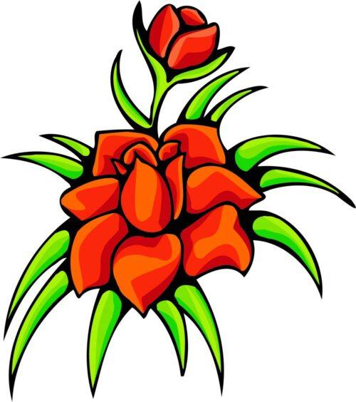 FLOWERS-COLOR-241