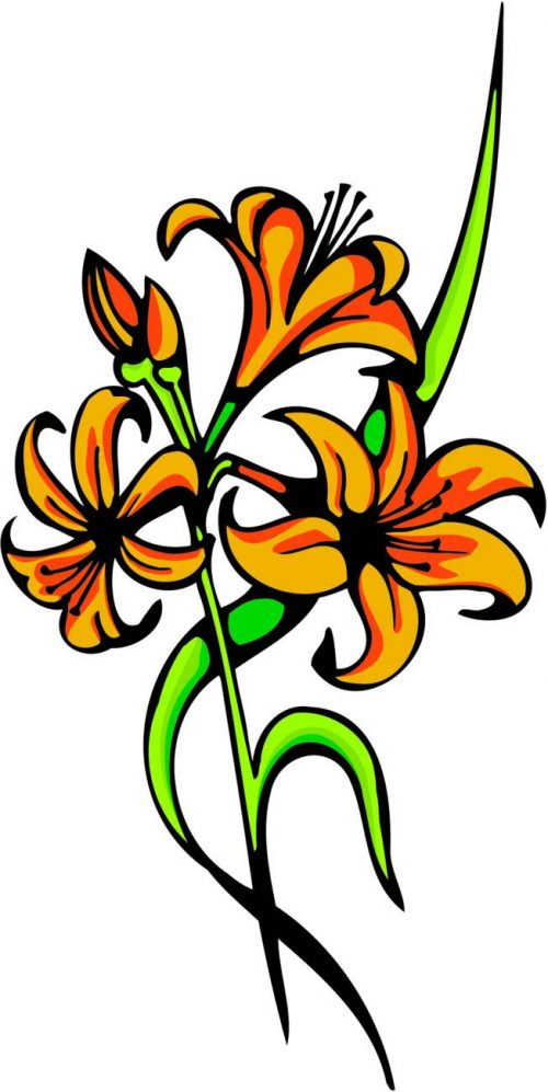 FLOWERS-COLOR-242