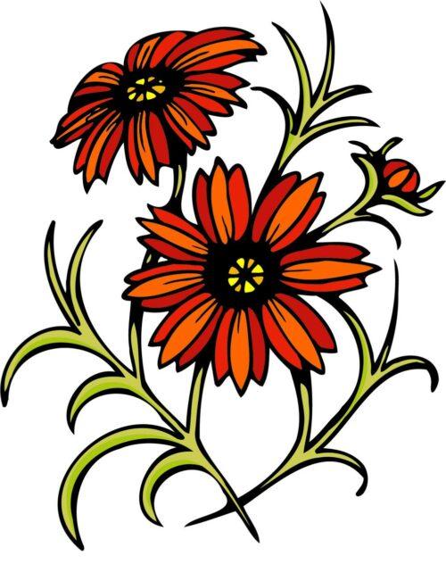 FLOWERS-COLOR-243