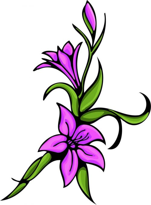 FLOWERS-COLOR-246