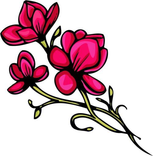 FLOWERS-COLOR-248