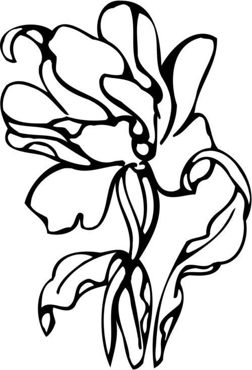 FLOWERS-501
