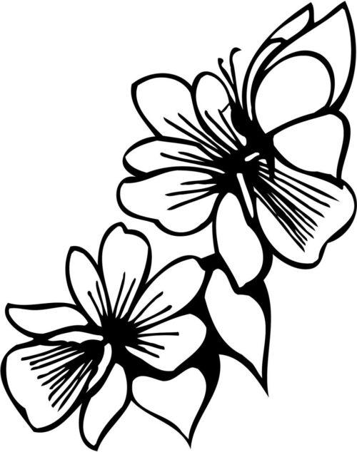 FLOWERS-517