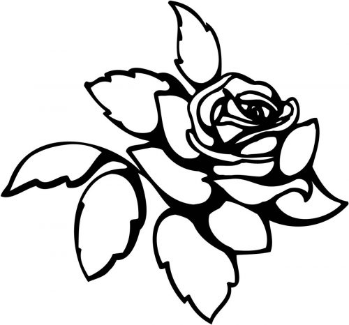 FLOWERS-522