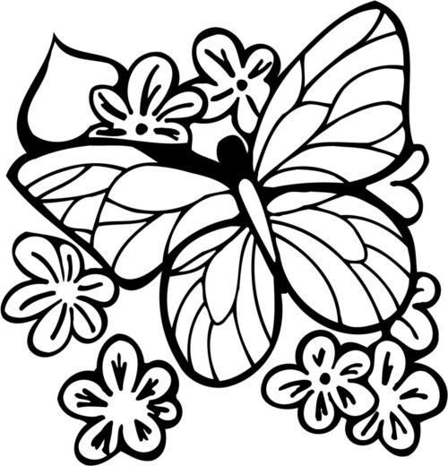 FLOWERS-523