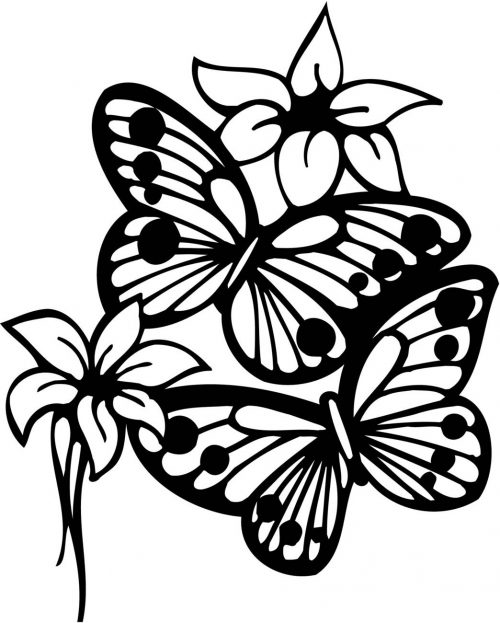 FLOWERS-527