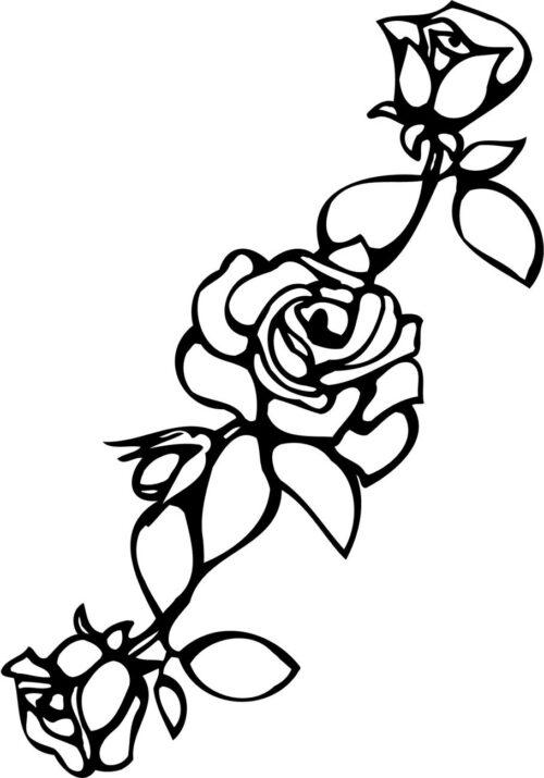 FLOWERS-529