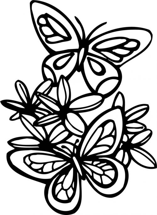 FLOWERS-530