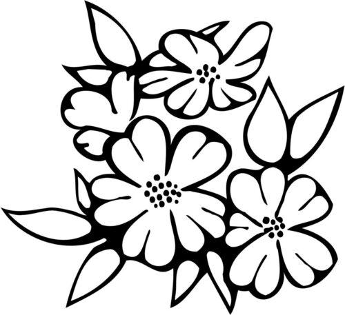 FLOWERS-534