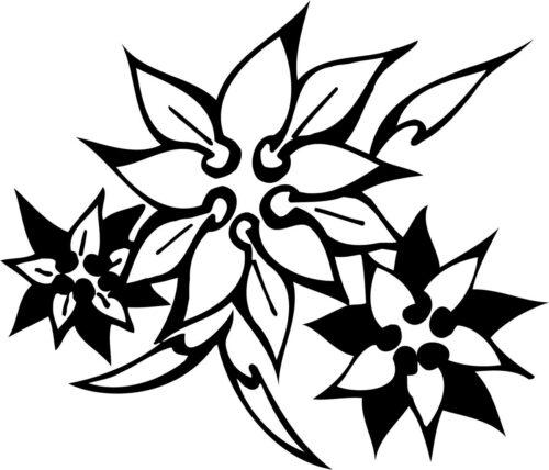 FLOWERS-537