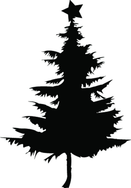 NEW-YEAR-TREES-040