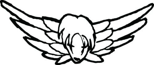 RELIGION-ANGELS-025