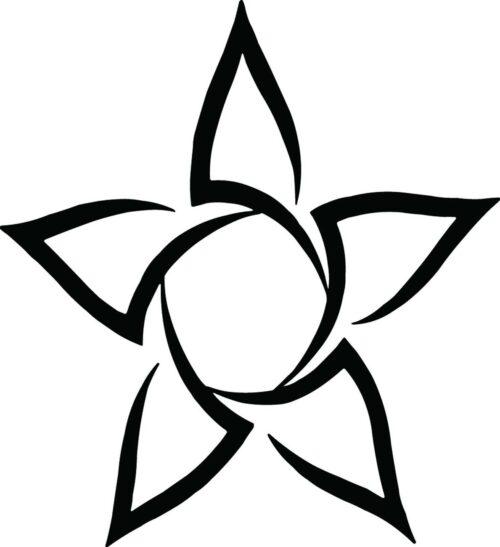 STARS-058