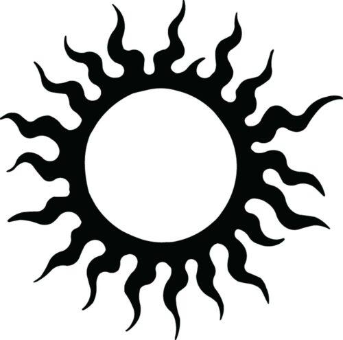 SUNS-302