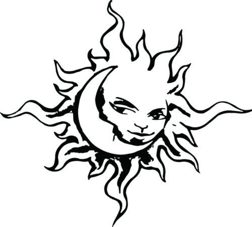 SUNS-307