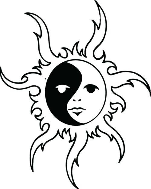 SUNS-313