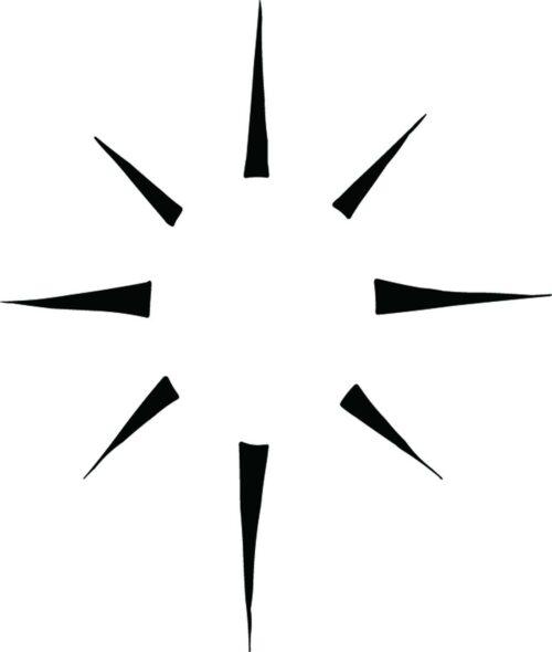SUNS-319