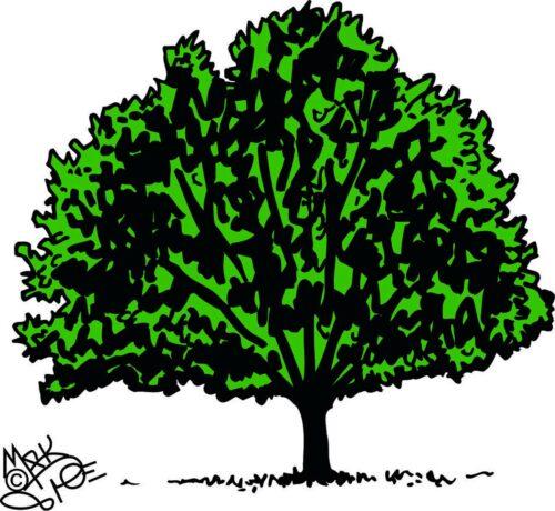 TREES-003