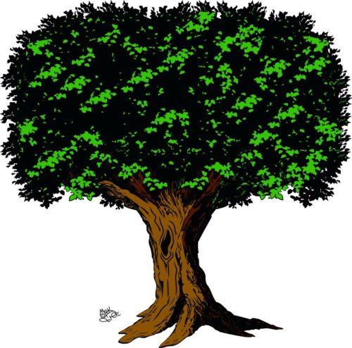 TREES-005