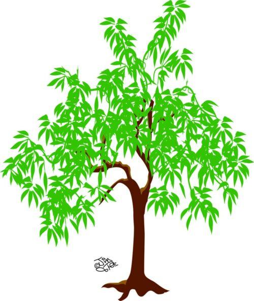 TREES-008