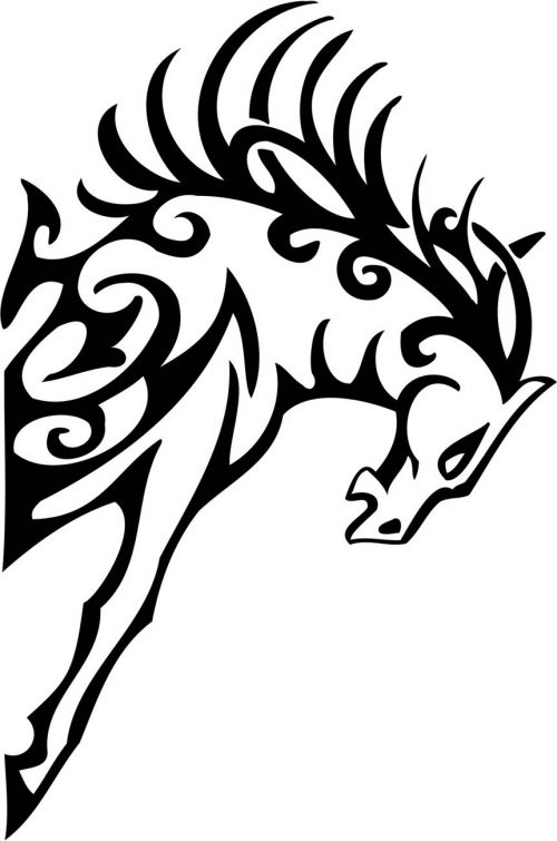 TRIBAL-HORSES-019