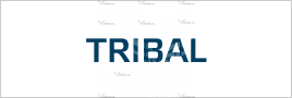 Спортивные наклейки tribal
